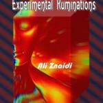 Ali Znaidi's Experimental Ruminations (2)